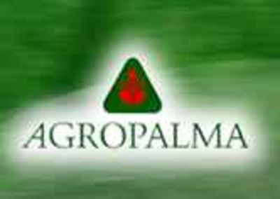 Agropalma supports OLT orangutan preservation actions in tropical forests
