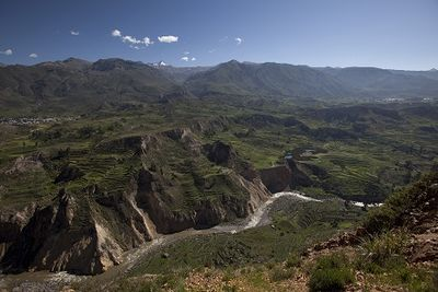 Peru's Colca Valley revives ancient agricultural terraces