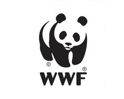 WWF Scorecard shows sustainable palm oil sourcing is possible