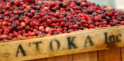 Ocean Spray to acquire Quebec's Atoka Cranberries